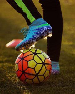 Interessi sportivi simili per coinquilini perfetti